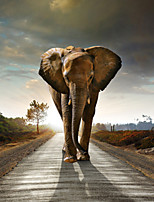 JAMMORY Art Deco Wallpaper Contemporary Wall Covering,Other Large Elephant Mural Wallpaper