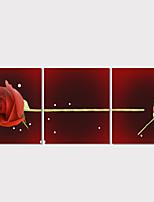 Moderno / Romamticismo Impresión de la lona Tres Paneles Listo para colgar,Horizontal