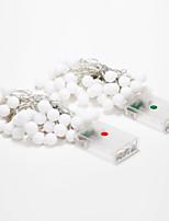 4m 40-LED Outdoor Holiday Decoration White/Warm White Light LED String Light (4.5V)