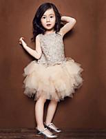 Halloween / Navidad / Carnaval / Día del Niño / Año Nuevo- paraNiño-Disfraces de las Series de Princesas-Disfraces-Vestido-