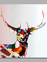 Colorful Sika Deer Hand Painted Paintings For Home Deco