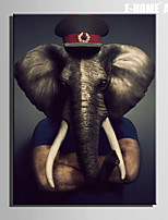 E-HOME® Stretched Canvas Art An Elephant In A Soldier's Hat Decoration Painting  One Pcs