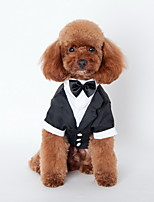 Dog Tie / Shirt / Clothes/Clothing Black Summer Britsh Wedding / Holiday-Lovoyager