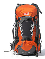 50 L Backpack Camping & Hiking / Climbing / Leisure Sports / Traveling OutdoorWaterproof /Dust Proof / Wearable