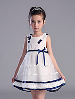 Girl's Casual/Daily Print Dress,Polyester All Seasons Blue / Pink