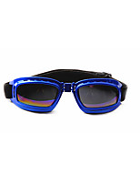 Hunde Sonnenbrillen Rot / Schwarz / Blau / Silber Sommer Sport Cosplay-Pething®
