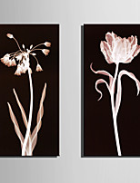 E-HOME® Stretched Canvas Art Pink Transparent Flower Decoration Painting  Set of 2