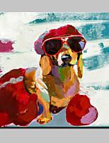 Handgeschilderde Abstract / Dieren / Cartoon / POPModern Eén paneel Canvas Hang-geschilderd olieverfschilderij For Huisdecoratie