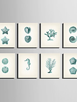 E-HOME® Stretched Canvas Art Marine Organisms Series Decoration Painting MINI SIZE One Pcs