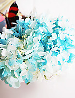 Bicolor Hydrangea Preserved Fresh Flowers