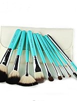 10PCS Makeup Brushes Set / Eyeshadow Brush / Lip Brush / Eyelash Comb (Flat) / Powder Brush / Foundation Brush