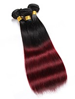3Pcs/Lot  Silky Straight Ombre Hair Two Tone Color T1B99J Indian Human Hair Weaves Hair Weft