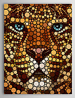 Animal Leopard Face Circle Portrait by Ben Heine Canvas Print From Ready to Hang 7 Wall Arts®