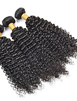 Wholesale 8a Brazilian Virgin Remy Curly Hair 3PCS/Lot Unprocessed Brazilian Human Hair Extensions Weaves