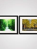 Paisagem / Floral/Botânico / Natureza Morta / Lazer Impressão de Arte Emoldurada / Quadros Emoldurados / Conjunto Emoldurado40x50cm