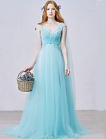 Formal Evening Dress-Pool Sheath/Column V-neck Sweep/Brush Train Tulle