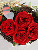 3.5-4.5cm Eight Red Roses with Shimmer Preserved Fresh Flowers