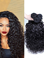 6A Indian Virgin Hair Water Wave 3Pc Unprocessed Indian Wet And Wavy Virgin Hair Human Hair Weave CARA Hair Products