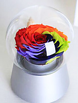 Colorful Roses Music Box Preserved Fresh Flowers Mother's Day Present