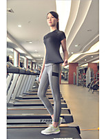 Women's Fashion High Elasticity Quick Dry Yoga Clothing Sets/Suits