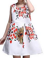 Girl's White Dress Cotton Spring / Fall