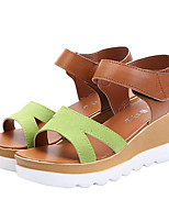 Women's Shoes Leatherette Summer Creepers Outdoor / Casual Platform Buckle Black / Green