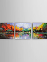 Oil Painting Impression Landscape Set of 3 Hand Painted Canvas with Stretched Framed Ready to Hang