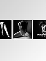 Abstracto / Fantasía / Ocio / Paisaje / Fotográfico / Moderno / Romamticismo / Pop Art Impresión de la lona Tres Paneles Listo para colgar