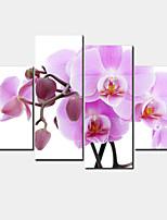 Modern Leinwand drucken Vier Panele Fertig zum Aufhängen,Horizontal