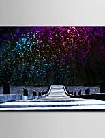E-HOME® Stretched LED Canvas Print Art Starlight Wood Plank LED Flashing Optical Fiber Print One Pcs