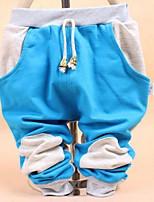 Boy's Cotton Pants,Spring / Fall Print