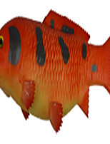 Simulation Of Red Black Carp