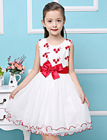 Girl's Cotton Summer Embroidery  Flowers Flouncing Lace Jumper Skirt  Lace Dress