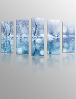 Snow flower on Canvas wood Framed 5 Panels Ready to hang for Living Decor
