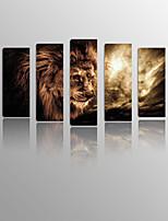 Impressão em tela esticada Paisagem / Vida Imóvel / Animal / Lazer Modern / Clássico / Mediterrêneo / Estilo Europeu,5 Painéis Tela