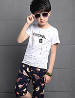 Boy's Cotton Summer  Splashed Ink Tee  Bird Harem Pants  Two-Piece Sweat Suit