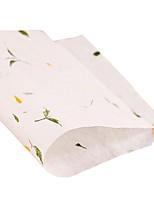plantas de papelería natural (un conjunto de 20, patrón al azar)