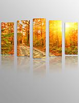 Sonnenaufgang in der Wolke auf Leinwand Holz gerahmte 5 Platten bereit für lebende Dekoration zu hängen