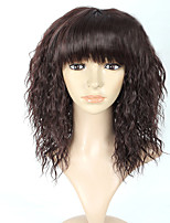 HOT Sale Euro Black Kinky Straight Synthetic Wigs