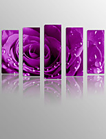 Romantic Rose on Canvas wood Framed 5 Panels Ready to hang for Living Decor