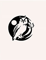 Animals Owl Wall Stickers Shapes Wall Stickers Plane Wall Stickers,pvc 40*40cm