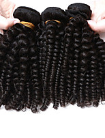 Brazilian Kinky Curly Virgin Hair Afro Kinky Curly Hair 3 Bundles Lot Brazilian Virgin Hair Human Hair Extensions