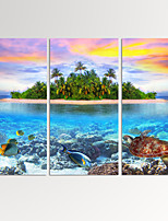 VISUAL STAR®Tropical Island Canvas Artwork Beautiful Seascape Turtle in Ocean Canvas Print Ready to Hang
