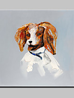 Lager Hand Painted Modern Abstract Dog Animal Oil Painting On Canvas Wall Art Picture For Home Whit Frame 100x100cm