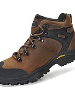 Men's / Unisex Hiking Shoes Nappa Leather Brown
