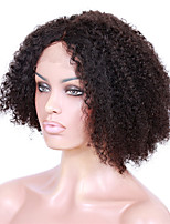 Brazilian Hair Lace Front Kinky Curly Hair Wigs 14-18inch