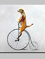 Handgemalte Tier Modern,Ein Panel Hang-Ölgemälde
