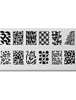 BlueZOO Rectangle Printing Nail Art Stamping (C-021)
