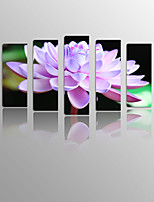 Lotus Flower on Canvas wood Framed 5 Panels Ready to hang for Living Decor