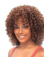 Hot Style Kinky Synthetic Top Quality Multi-color Wigs Hair
